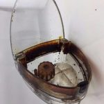 Oily Espresso Beans ⎮ How Oily Beans Can Ruin Your Superautomatic - Espresso  Machine Experts