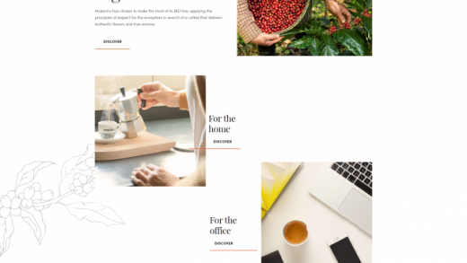 Pin by Nomiscom WebDesign on Inspiration   Simple website design, Simple  website, Web design