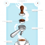 Coffee seems more awesome when we are together.   Coffee infographic, Coffee  poster, Coffee chart