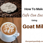 How To Make Cafe Con Leche Using Goat Milk - The Organic Goat Lady