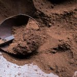 What's A Good Espresso Powder Substitute? - SPICEography
