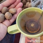 Nutmeg Tea Recipes & Detailed Preparation Guide - The Revisionist