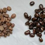 Oily Coffee Beans Vs Dry - The Whole Portion
