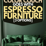 What Color Couch Goes With Espresso Furniture [3 Options] - Home Decor Bliss