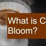 What is Coffee Bloom? - Does it Affect Taste and Aroma?