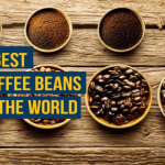 THE DEAN OF BEANS – Bean Mindful
