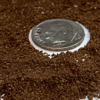 How to Grind Coffee Beans and Why You Should
