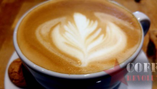 Guide to leaf designs on a flat white