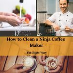 How to Clean a Ninja Coffee Maker (The Easy Way in 2021)