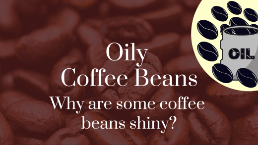 Oily Coffee Beans: Why Are Some Coffee Beans Shiny?